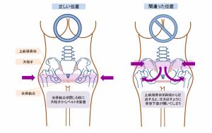 骨盤ベルトを巻く正しい位置は、恥骨と大転子を結ぶラインです。